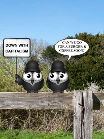 dissident: Comical contradictory anti capitalism bird protesters perched on a countryside fence demonstrating Stock Photo