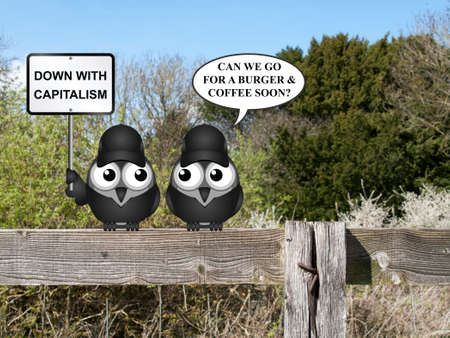 anarchism: Comical contradictory anti capitalism bird protesters perched on a countryside fence demonstrating Stock Photo