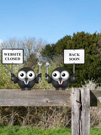 computer repairing: Comical website closed due to maintenance back soon message with bird IT technicians perched on a countryside fence