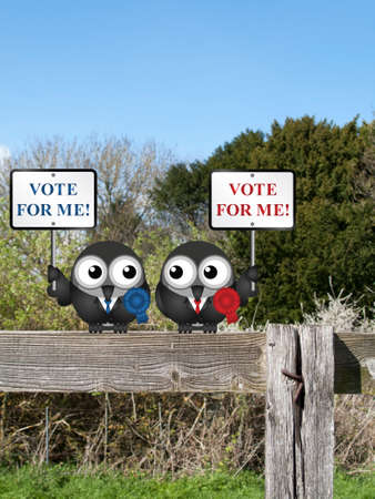 parliamentarian: Left and right wing politicians vying for your vote perched on a countryside fence