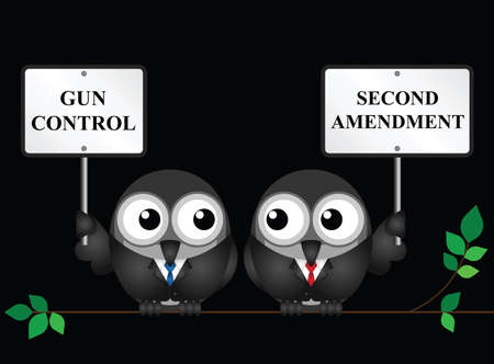 Gun control verses the USA second amendment and the right to keep and bear arms.