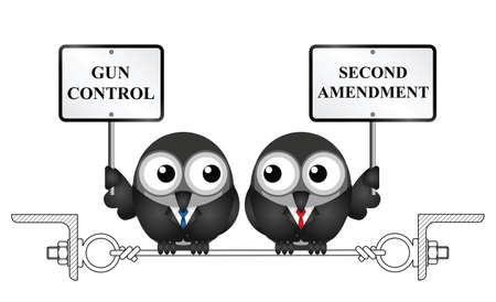 Gun control verses the USA second amendment and the right to keep and bear arms