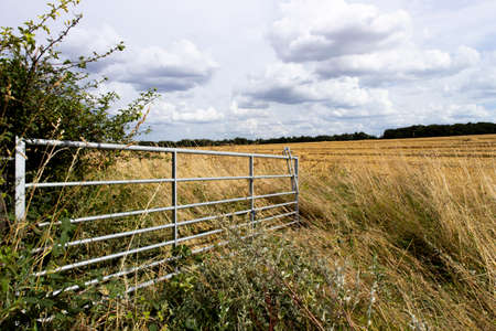 Open metal framed farm gate to farmland field in rural Hampshire
