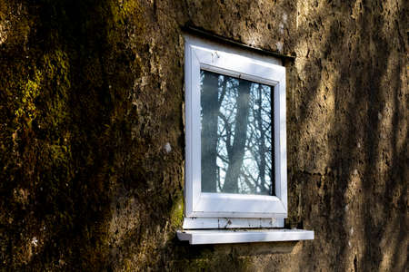 UPVC white window on derelict building awaiting demolition with reflection of trees in glass