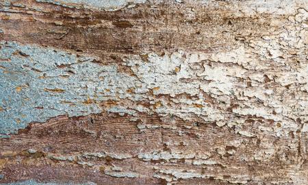 peeling paint: Peeling paint on rusty background Stock Photo