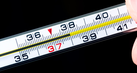 body temperature: Body temperature measurement