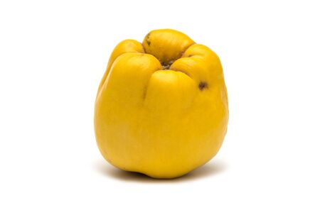 quince: Quince isolated