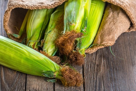 Corn cobs on wooden background