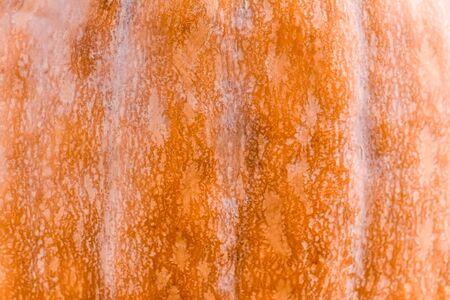 Pumpkin peel background Stock Photo
