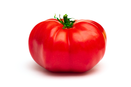 Big genetically modified tomato on a white background