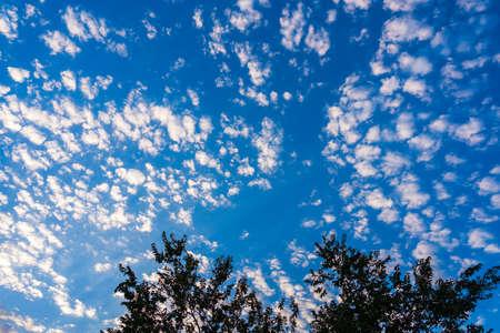 Clouds on the blue sky 版權商用圖片