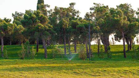 Watering lawns in a city park Standard-Bild