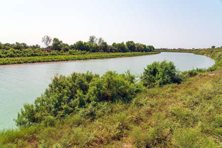 River bed with green trees along the bank