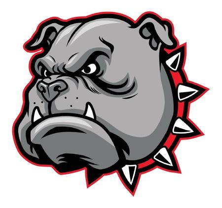 bulldog: bulldog mascot