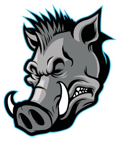 怒っている野生の豚