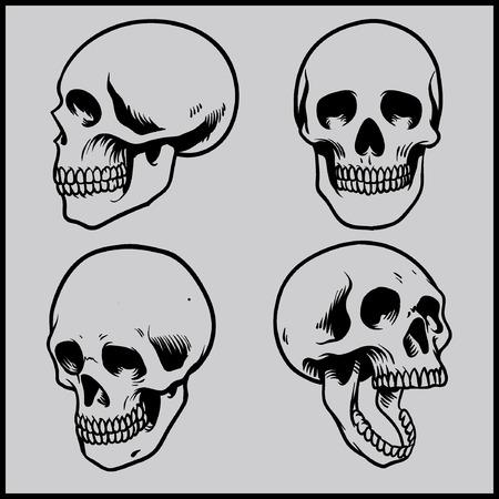 skull and bones: set of skull