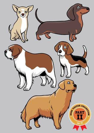 cane chihuahua: raccolta set di cane parte 23