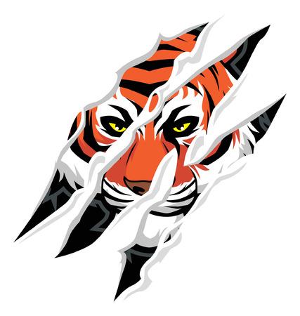 garra: tigre garra marca de estafa, con la cara de tigre detrás de él