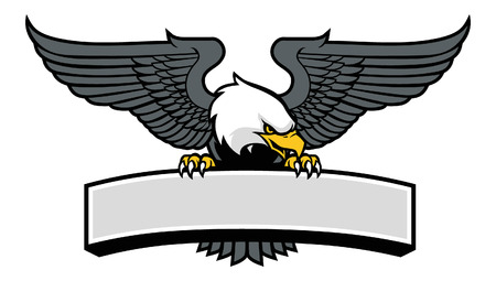 Bald eagle stand over the blank space banner
