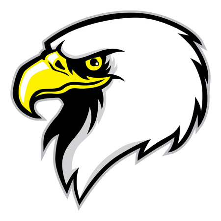 head of eagle Vector illustration.