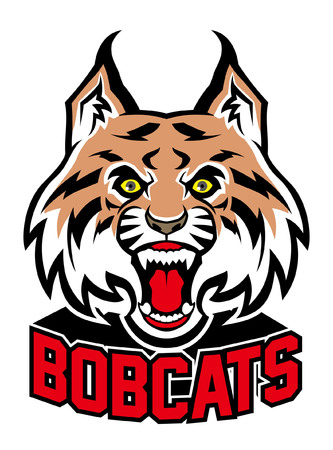 bobcat sport mascot illustration