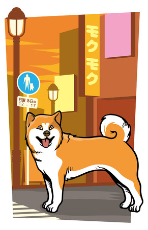 Akita inu Japanese dog Illustration