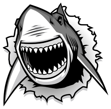 great white shark Illustration
