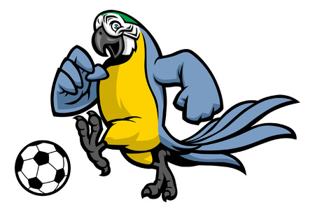 blue and gold macaw soccer mascot Illustration