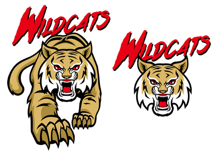 wildcat mascot set 向量圖像