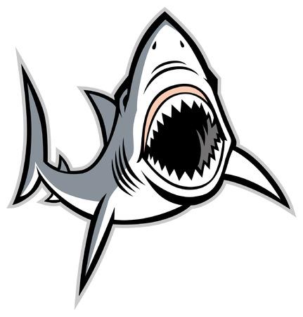 Hai-Maskottchen Vektorgrafik