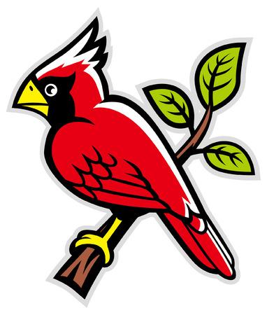mascotte dell'uccello cardinale