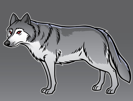 grey wolf Ilustracja