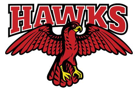 hawk mascot spreading the wings Illustration