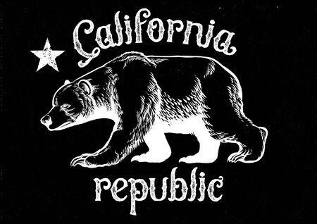 hand drawn bear of california republic