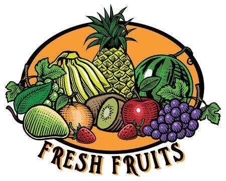 hand drawn illustration of fruits in engraved vintage style Foto de archivo - 126488577