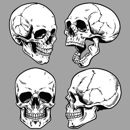 set of skull collection in hand drawn style