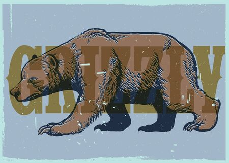 vintage illustration of grizzly bear