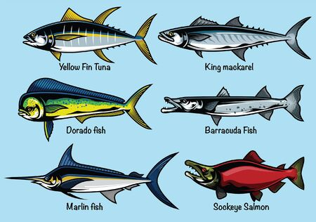 set of ocean fish collection