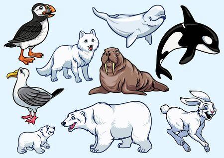 set bundle of arctic animal