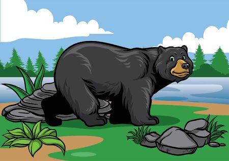 black bear at the nature Illustration
