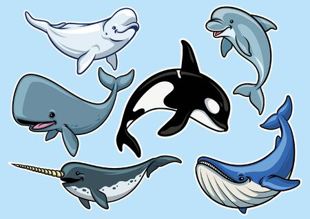 bundle set of whale cartoon character