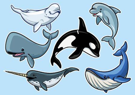 bundle set of whale cartoon character