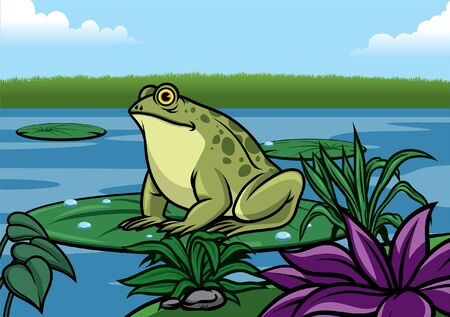 frog in the lake