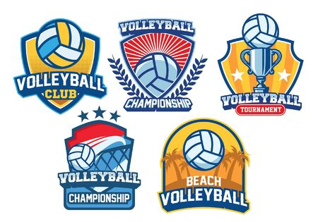 set bundle of volley ball badge design  イラスト・ベクター素材