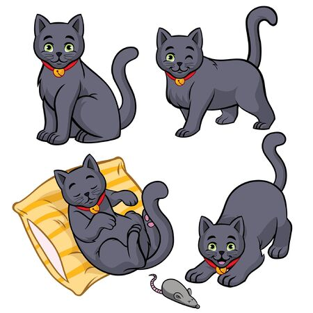 set bundle of russian blue cat in various pose