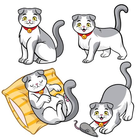 set bundle of scottish fold cat in various pose 向量圖像