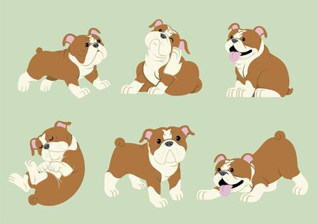 set  bundle of bulldog cartoon character