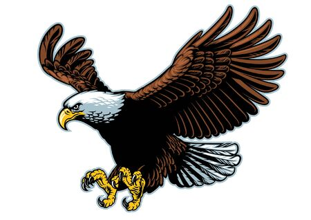 american bald eagle of mascot flying