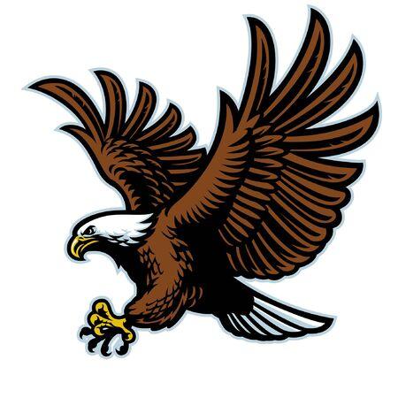 American bald eagle Standard-Bild - 133883124