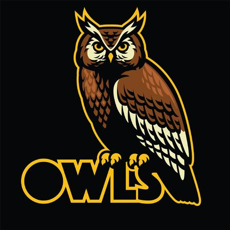 owl mascot with typography Ilustrace